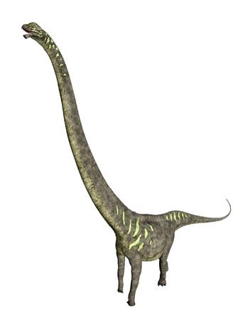 enormously: Dinosaur Mamenchisaurus Stock Photo