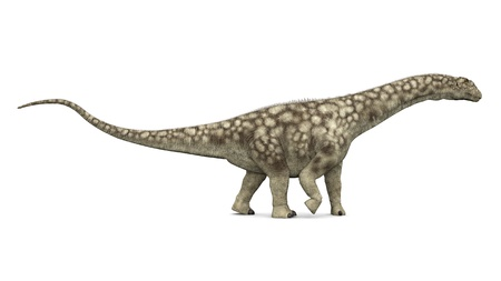 Dinosaur Argentinosaurus photo