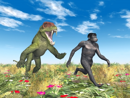 Homo Habilis - Human Evolution Stock Photo - 22676725