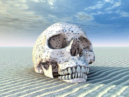 desert landscape: Human Skull in a Desert Landscape