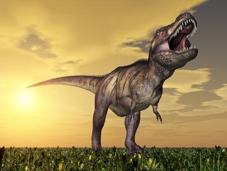 massive: Tyrannosaurus Rex at sunset