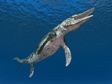 モササウルス科ティロサウルス