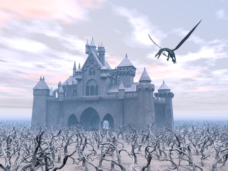 flying dragon: Castle and Flying Dragon Stock Photo