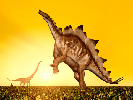 stegosaurus: The Dinosaurs Stegosaurus and Mamenchisaurus at sunset Stock Photo