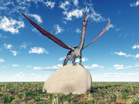 enormously: Dragon