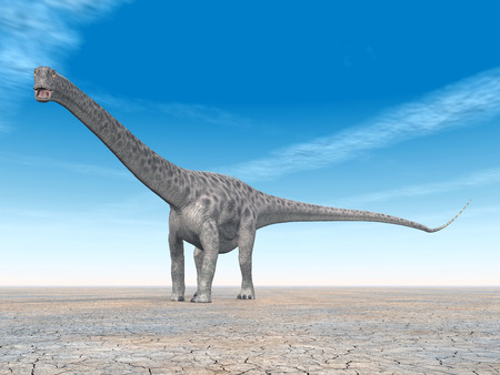 enormously: Diplodocus Dinosaur