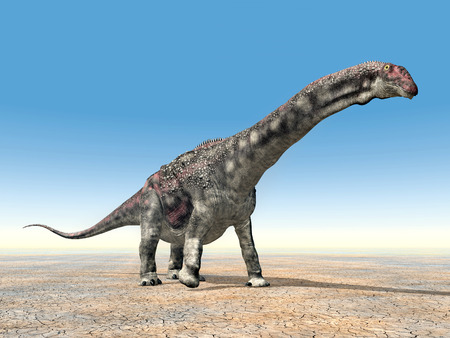 enormously: Diamantinasaurus Dinosaur