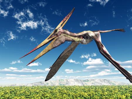 Pterosaur Pteranodon
