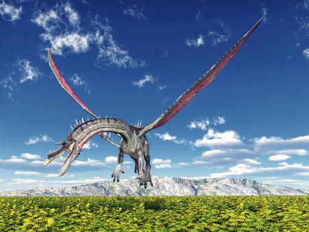 flying dragon: Flying Dragon