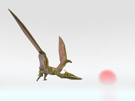 pterosaur: Pterosaur Quetzalcoatlus at sunrise