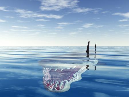 dangerous: Great White Shark