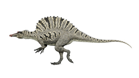공룡 Spinosaurus