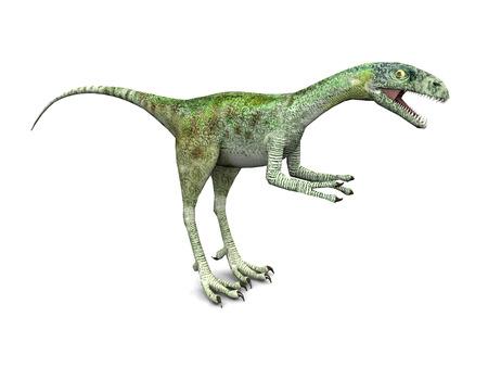 작은 수각류 공룡 Compsognathus