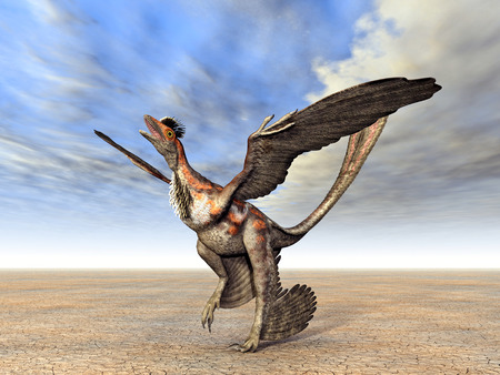 공룡 Microraptor 스톡 콘텐츠 - 29171318