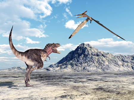 pterosaur: The Dinosaur Tarbosaurus and the Pterosaur Pteranodon Stock Photo