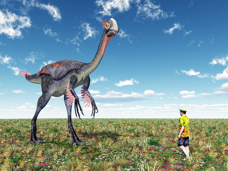 Tourist and the Dinosaur Gigantoraptor