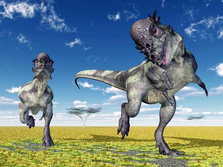 恐竜パキケファロサウルス 写真素材