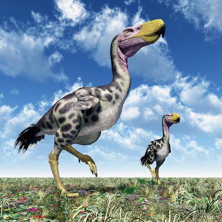 Terror Vogel Kelenken Standard-Bild