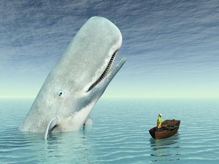 고래 구경 스톡 콘텐츠
