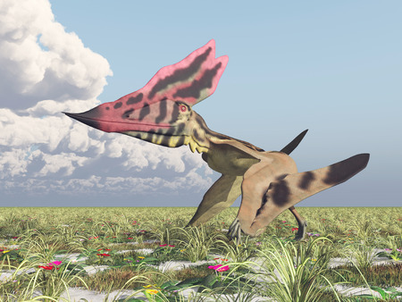 pterosaur: Pterosaur Thalassodromeus Stock Photo