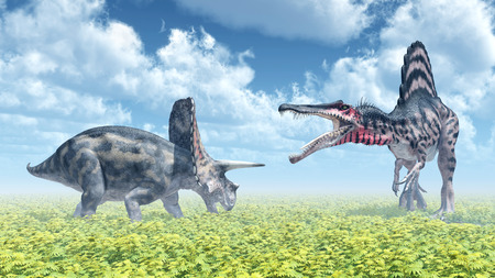 spinosaurus: The dinosaurs Torosaurus and Spinosaurus attacking each other