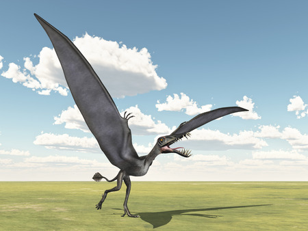 steppe: Pterosaur Dorygnathus
