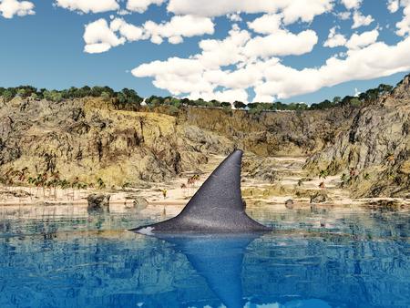 great white: Great white shark near the beach Stock Photo