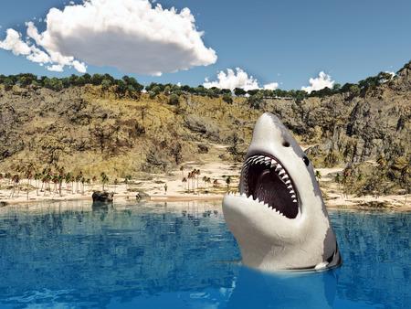 shark fin: Great white shark near the beach Stock Photo