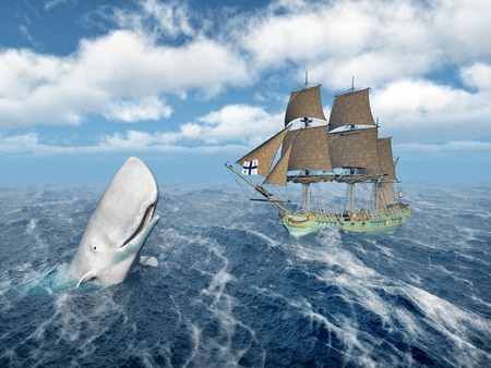 sperm whale: Mocha Dick