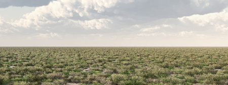 steppe: Prairie Stock Photo