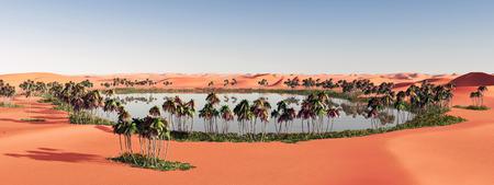 oasis: Oasis in the desert