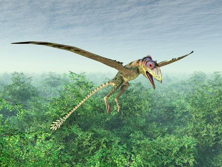 pterosaur: Pterosaur Peteinosaurus Stock Photo