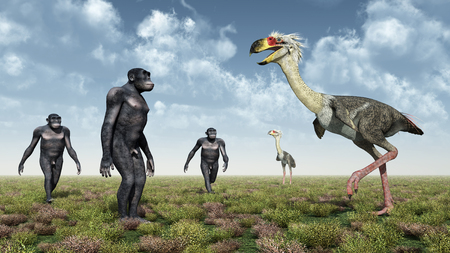 habilis: Homo Habilis and the terror bird Phorusrhacos Stock Photo