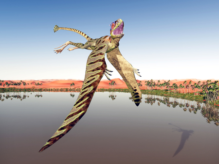 pterosaur: Pterosaur Peteinosaurus Stock Photo
