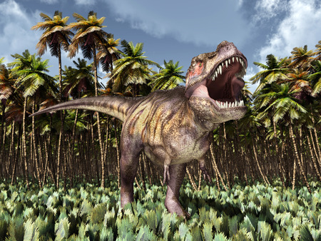 tiranosaurio rex: Tyrannosaurus Rex en la selva Foto de archivo