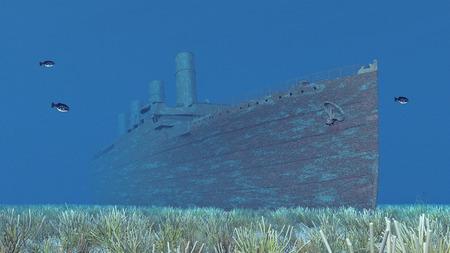 sea disaster: Shipwreck, fish and sea anemones