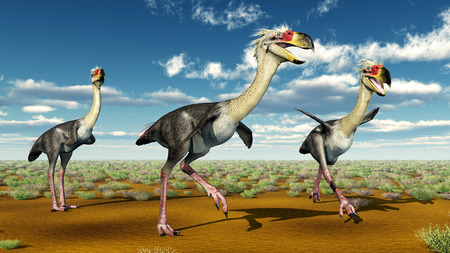 terror: Terror Bird Phorusrhacos Stock Photo