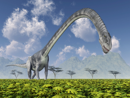 gigantic: Dinosaur Omeisaurus Stock Photo