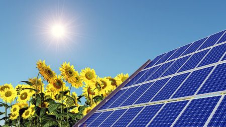 cloudless: Solar panel and sunflowers Stock Photo