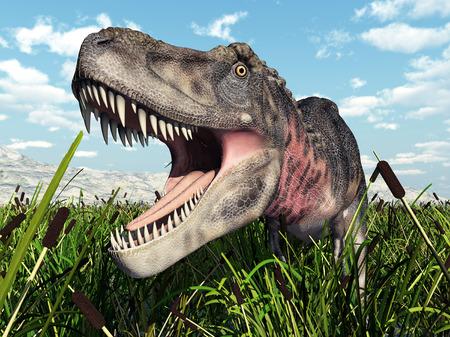 Tarbosaurus dinosaurio Foto de archivo