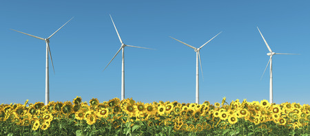 cloudless: Wind turbines and sunflowers Stock Photo