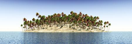 panoramic beach: Tropical island with palms