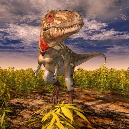 primeval: Dinosaur Nanotyrannus