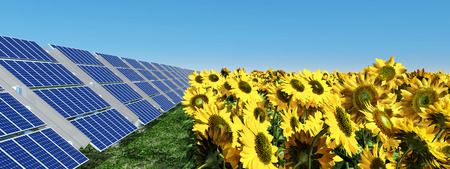 cloudless: Solar panels and sunflowers Stock Photo