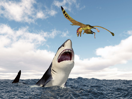 pterosaur: Shark attacks the pterosaur Peteinosaurus Stock Photo