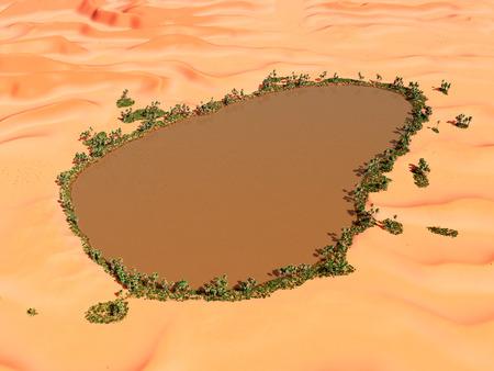 sand dune: Desert oasis