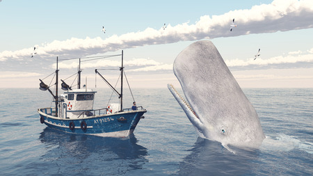 fishing vessel: Fishing trawler and sperm whale
