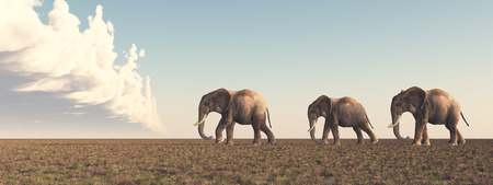 steppe: Elephants in the savannah Stock Photo
