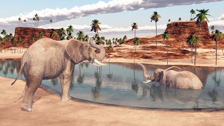 pozo de agua: Dos elefantes en una charca Foto de archivo