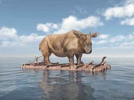 Rhinoceros on a raft